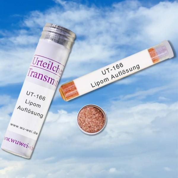 Lipom Auflösung (UT-Transmitter)