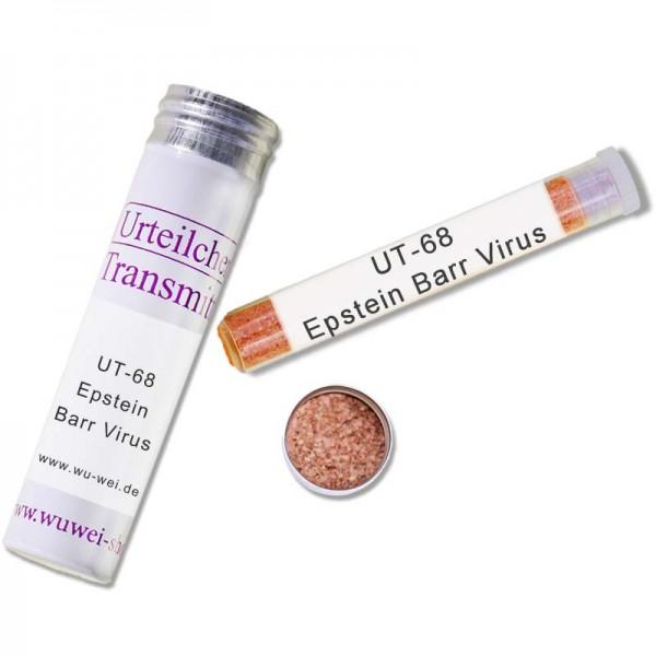 """Epstein Barr Virus """"UT-Transmitter"""""""