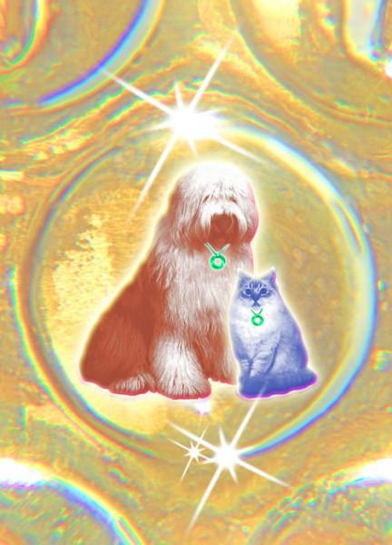 Urteilchen PET