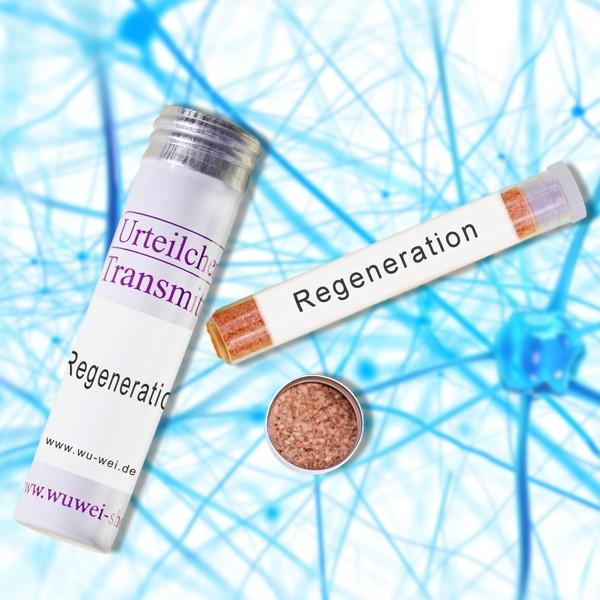 Transmitter - Regeneration auf neuronaler Ebene und neuronales Wachstum